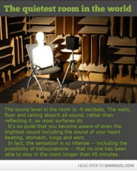 quietest room in the world