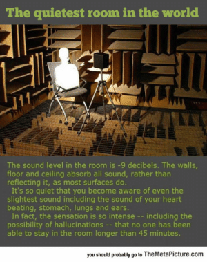 lolzandtrollz:  The Quietest Room In The World: The quietest room in the world  The sound level in the room is -9 decibels. The walls  floor and ceiling absorb all sound, rather tharn  reflecting it, as most surfaces do.  It's so quiet that you become aware of even the  slightest sound including the sound of your heart  beating, stomach, lungs and ears.  In fact, the sensation is so intense --including the  possibility of hallucinations - that no one has been  able to stay in the room longer than 45 minutes.  you should probably go to TheMetaPicture.com lolzandtrollz:  The Quietest Room In The World
