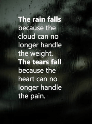 Fall, Memes, and Cloud: The rain falls  because the  cloud can no  longer handle  the weight.  The tears fall  because the  heart can no  longer handle  the pain. <3
