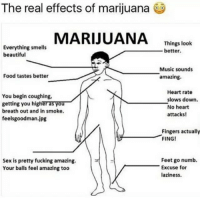 ☺️🍁💚 marijuana maryjane thegoodstuff firebitches: The real effects of marijuana  MARIJUANA Thing lok  Everything smells  beautiful  Things look  better  Music sounds  amazing.  Food tastes better  You begin coughing,  getting you higher as you  breath out and in smoke  feelsgoodman.jpg  Heart rate  slows down.  No heart  attacks!  Fingers actually  FING!  Feet go numb.  Sex is pretty fucking amazing.  Your balls feel amazing too  Excuse for  aziness ☺️🍁💚 marijuana maryjane thegoodstuff firebitches