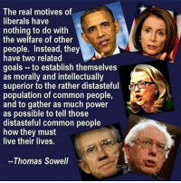 Goals, Memes, and Common: The real motives of  liberals have  nothing to do with  the welfare of other  people. Instead, they  have two related  goals - to establish themselves  as morally and intellectually  superior to the rather distasteful  population of common people,  and to gather as much power  as possible to tell those  distasteful common people  how they must  live their lives.  --Thomas Sowell Truth!