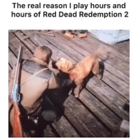 Apparently you can PET DOGS IN VIDEO GAMES?!? @kaitykatt rewarding a good boy. Meme by @explorewithollie: The real reason I play hours and  hours of Red Dead Redemption 2 Apparently you can PET DOGS IN VIDEO GAMES?!? @kaitykatt rewarding a good boy. Meme by @explorewithollie