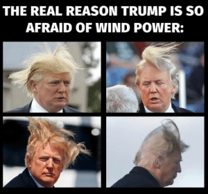 Power, The Real, and Trump: THE REAL REASON TRUMP IS SO  AFRAID OF WIND POWER: Makes sense.