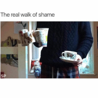 Fire, Memes, and The Real: The real walk of shame  AML  HIV  SP Don't get caught doing this 😭😭 RoomFullOfCuttlery _ _ FOLLOW: ➡➡➡@_IM_JUST_THAT_GUY_____ ⬅⬅⬅ for daily fire posts 🔥🤳🏼