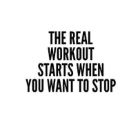 workout: THE REAL  WORKOUT  STARTS WHEN  YOU WANT TO STOP