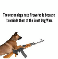 Tag a friend who's dog is shitting in their house right now cowering in fear from the sound of fireworks!: The reason dogs hate fireworks is because  it reminds them of the Great Dog Wars Tag a friend who's dog is shitting in their house right now cowering in fear from the sound of fireworks!