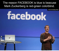 The reason FACEBOOK is blue is beacuse  Mark Zuckerberg is red-green colorblind.  Some Amazing Facts  facebook
