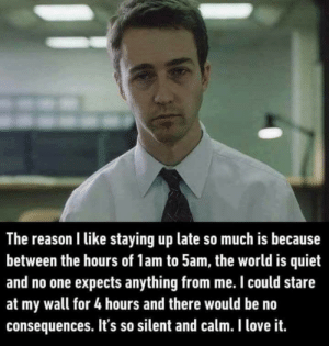 meirl by supersammy00 FOLLOW 4 MORE MEMES.: The reason I like staying up late so much is because  between the hours of 1am to 5am, the world is quiet  and no one expects anything from me. I could stare  at my wall for 4 hours and there would be no  consequences. It's so silent and calm. I love it. meirl by supersammy00 FOLLOW 4 MORE MEMES.