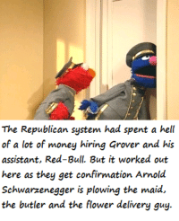 California Dreaming.: The Republican system had spent a hell  of a lot of money hiring Grover and his  assistant, Red-Bull. But it worked out  here as they get confirmation Arnold  Schwarzenegger is plowing the maid,  the butler and the flower delivery guy. California Dreaming.