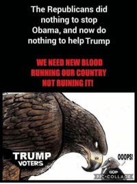 DO NOT LET THE MEDIA AND RINOS FOOL YOU!: The Republicans did  nothing to stop  Obama, and now do  nothing to help Trump  WE NEED NEW BLOOD  RUNNING OUR COUNTRY  NOT RUINING IT!  TRUMP  VOTERS  000PS  GOP  PIC COLLAGE DO NOT LET THE MEDIA AND RINOS FOOL YOU!