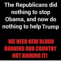 Absolutely right! #NIDPatriots: The Republicans did  nothing to stop  Obama, and now do  nothing to help Trump  WE NEED NEW BLOOD  RUNNING OUR COUNTRY  NOT RUINING IT! Absolutely right! #NIDPatriots