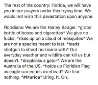 "America, Memes, and Australia: The rest of the country: Florida, we will have  you in our prayers under this trying time. We  would not wish this devastation upon anyone.  Floridians: We are the Honey Badger. *grabs  bottle of booze and cigarettes* We give no  fucks. *rises up on a cloud of mosquitos We  are not a species meant to last. loads  shotgun to shoot hurricane with* Our  everyday weather and wildlife can kill us but  doesn't. *dropkicks a gator We are the  Australia of the US. *holds up Floridian Flag  as eagle screeches overhead* We fear  nothing. *#Murica"" Bring. It. On. merica america usa hurricane"
