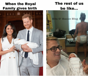 Be Like, Dank, and Family: The rest of us  be like...  When the Royal  Family gives birth  Bits O' Bacon Blog We love you, Meghan, but this is the truth.  (via Bits O' Bacon Blog)