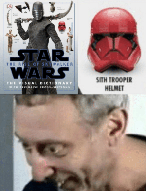 The Rise Of Skywalker Wars Sith Trooper Helmet The Visual Dictionary With Exclusive Cross Sections Wait Sith Meme On Me Me