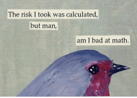 But Man Am I Bad At Math: The risk I took was calculated,  but man,  am I bad at math