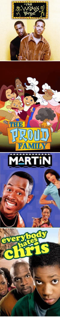 Martin, Netflix, and Hood: THE  ro   O O  PROUD  FAMILY   MARTIN   everybody  ates just a few shows netflix still needs to add