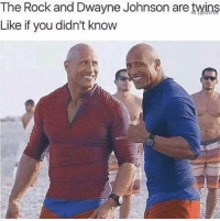 Dwayne Johnson, Memes, and Snapchat: The Rock and Dwayne Johnson are twins  Like if you didn't know Snapchat: DankMemesGang