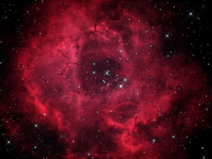 Rose, Light, and Nebula: The rosette Nebula, which is 50 light years in a diameter, Looks like a rose.