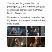 Memes, Movies, and Stan: The saddest thing about Stan Lee  passing away is that will no longer get to  see his usual cameos in all the Marvel  Movies, Games, etc.  He pioneered Marvel and is an absolute  legend but his cameos made him all the  more special.  NY 🙏🏼 stanlee sadnews marvel amazingpeople