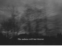 The Sadness Will Last Forever: The sadness will last forever