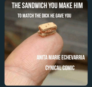 When you're hung like a hamster by anitalostinthe217 MORE MEMES: THE SANDWICH YOU MAKE HIM  TO MATCH THE DICK HE GAVE YOU  ANITA MARIE ECHEVARRIA  CYNICAL COMIC When you're hung like a hamster by anitalostinthe217 MORE MEMES