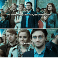 Memes, Pain, and 🤖: The scar had not pained Harry for nineteen years.  THE W I ZARDS  All was well What color are your eyes? harrypotter hp jkrowling hogwarts