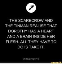 writing prompt: THE SCARECROW AND  THE TINMAN REALISE THAT  DOROTHY HAS A HEART  AND A BRAIN INSIDE HER  FLESH. ALL THEY HAVE TO  DO IS TAKE IT  WRITING.PROMPT.S  funny.ce writing prompt