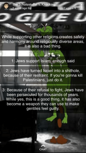 Bad, Just Do It, and Camera: The Schutzstaffel Is Knockin  week ago b  rom Camera R...  While supporting other religions creates safety  and harmony around religiously diverse areas,  it is also a bad thing.  1: Jews support Islam, enough said  2: Jews have turned Israel into a shithole,  because of their restraint. If you're gonna kill  Palestinians, just do it.  3: Because of their refusal to fight, Jews have  been persecuted for thousands of years.  While yes, this is a good thing, it has also  become a weapon they can use to make  gentiles feel guility  CHAT He's in grade 9 and posts stuff like this daily.