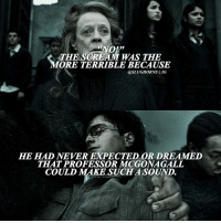 Memes, Scream, and 🤖: THE SCREAM WAS THE  MORE TERRIBLE BECAUSE  @SLUGHORNS II IG  HE HAD NEVER EXPECTED OR DREAMED  TAAT PROFESSOR MCGONAGALL.  COULD MAKE SUCH A SOUND. • This chapter was my favorite chapter in the series for a long time. Try commenting your name one letter at a time without being interrupted!