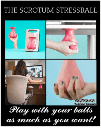 Wednesday, Hilarious, and Play: THE SCROTUM STRESSBALL  The Intenet Scarengrs  Play wilth your balls  as amuch as vou want! <p>Hilarious Wednesday picture collection  Quality giggles  PMSLweb </p>