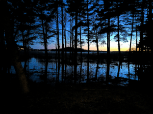 The Sea has flooded to the ground in Helsinki region, Finland (this evening) [OC]: The Sea has flooded to the ground in Helsinki region, Finland (this evening) [OC]