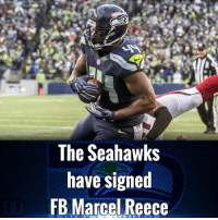 Welcome back @CelReece45!: The Seahawks  have signed  FB Marcel Reece Welcome back @CelReece45!