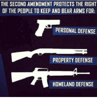America, Guns, and Memes: THE SECOND AMENDMENT PROTECTS THE RIGHT  OF THE PEOPLE TO KEEP AND BEAR ARMS FOR:  PERSONAL DEFENSE  PROPERTY DEFENSE  HOMELAND DEFENSE Double tap if you agree! . . . Conservative America SupportOurTroops American Gun Constitution Politics TrumpTrain President Jobs Capitalism Military MikePence TeaParty Republican Mattis TrumpPence Guns AmericaFirst USA Political DonaldTrump Freedom Liberty Veteran Patriot Prolife Government PresidentTrump Partners @conservative_panda @reasonoveremotion @conservative.american @too_savage_for_democrats @conservative.nation1776 -------------------- Contact me ●Email- RaisedRightAlwaysRight@gmail.com ●KIK- @Raised_Right_ ●Send me letters! Raised Right, 5753 Hwy 85 North, 2486 Crestview, Fl 32536