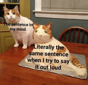 In My Mind: The sentence in  my mind  Literally the  same sentence  when I try to say  it out loud
