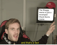 Chuck Norris, Facts, and Meme: The Shaggy  meme is just a  revamped  Chuck Norris  meme  and that's a fact