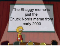 Chuck Norris: The Shaggy meme is  just the  Chuck Norris meme from  early 2000