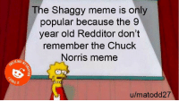 Chuck Norris, Meme, and Old: The Shaggy meme is only  popular because the 9  year old Redditor don't  remember the Chuck  Norris meme  SIS NOT  u/matodd27