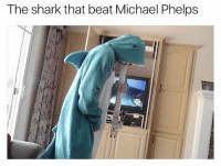 @drgrayfang he was on performance enhancing drugs tho 🦈: The shark that beat Michael Phelps @drgrayfang he was on performance enhancing drugs tho 🦈
