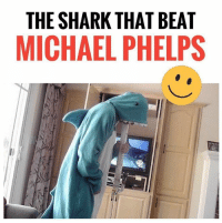 He is ready for everything!😆: THE SHARK THAT BEAT  MICHAEL PHELPS He is ready for everything!😆