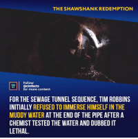 This soundtrack and his escape just give me the biggest chills, seen this movie prob 50 times, still get choked-up watching this scene. Your thoughts?⠀ -⠀⠀ Follow @cinfacts for more facts: THE SHAWSHANK REDEMPTION  Follow  cinfacts  for more content  ACTS  FOR THE SEWAGE TUNNEL SEQUENCE, TIM ROBBINS  INITIALLY REFUSED TO IMMERSE HIMSELF IN THE  MUDDY WATER AT THE END OF THE PIPE AFTER A  CHEMIST TESTED THE WATER AND DUBBED IT  LETHAL. This soundtrack and his escape just give me the biggest chills, seen this movie prob 50 times, still get choked-up watching this scene. Your thoughts?⠀ -⠀⠀ Follow @cinfacts for more facts