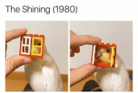 The Shining, Shining, and The: The Shining (1980)