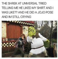 Crying, Memes, and Shrek: THE SHREK AT UNIVERSAL TRIED  TELLING ME HE LIKED MY SHIRT ANDI  WAS LIKE?? AND HE DID A JOJO POSE  AND IM STILL CRYING