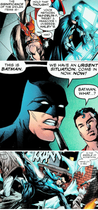 "justiceleaque:batman's equivalent of ""nightwing yo"": THE  SIGNIFICANCE  OF THE STOLEN  ITEMS IS  HOLD THAT  THOUGHT  VOICE  NETWORK  463-DELTA-7,  TARGET 3,  PASSCODE 1  OVERRIDE:  HALEY'S.  HM?   THIS IS  BATMAN.  WE HAVE AN URGENT  SITUATION. COME IN  NOW. NOW!  BATMAN,  WHAT...?   IN THE  MIDDLE OF  SOMETHING  HANG ON  A SEC. justiceleaque:batman's equivalent of ""nightwing yo"""