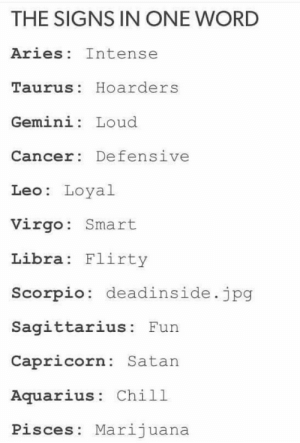 Gemini: THE SIGNS IN ONE WORD  Aries Intense  Taurus: Hoarders  Gemini: Loud  Cancer: Defensive  Leo: Loyal  Virgo: Smart  Libra Flirty  Scorpio: deadinside.jpg  Sagittarius: Fun  Capricorn: Satan  Aquarius: Chill  Pisces: Marijuana