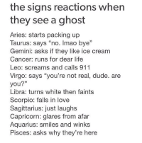 """from afar: the signs reactions when  they see a ghost  Aries: starts packing up  Taurus: says """"no. Imao bye""""  Gemini: asks if they like ice cream  Cancer: runs for dear life  Leo: screams and calls 911  Virgo: says """"you're not real, dude. are  you?""""  Libra: turns white then faints  Scorpio: falls in love  Sagittarius: just laughs  Capricorn: glares from afar  Aquarius: smiles and winks  Pisces: asks why they're here"""