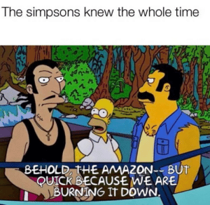 These madafaka writers know everything: The simpsons knew the whole time  BEHOLD, THE AMAZON-BUT  QUICK BECAUSE WE ARE  BURNING IT DOWN. These madafaka writers know everything