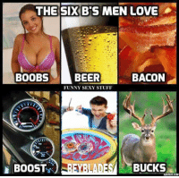 funny sexy: THE SIX BIS MEN LOVE  BACON  BOOBS  BEER  FUNNY SEXY STUFF  BUCKS  BOOST  ADORE .COM
