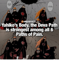 "Facts, Memes, and Naruto: ""THE SIX  PATHS OF  PAIN.""  TO WITNESS  NARUTO FACTS  Yahiko's Body, the Deva Path  is strongest among all 6  Paths of Pain. Can you name all the Paths of Pain? 🤔 