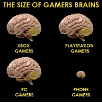 Fire back at the haters, mobile gamers!: THE SIZE OF GAMERS BRAINS  NG  XBOX  PLAYSTATION  GAMERS  GAMERS  PC  PHONE  GAMERS  GAMERS Fire back at the haters, mobile gamers!