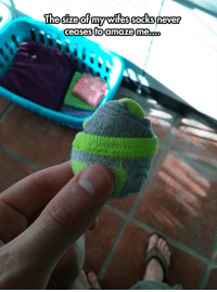 srsfunny:So Tiny: The sizeofmy wiessocks never  ceases to amaze me.. srsfunny:So Tiny